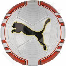 Futbolo kamuolys Puma evoPower Lite 290g 08222501