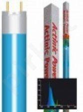 Actinic Power T5 24 W 550 mm