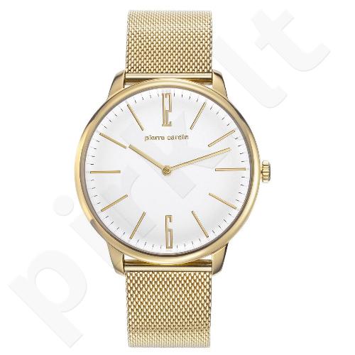 Vyriškas laikrodis Pierre Cardin PC106991F30