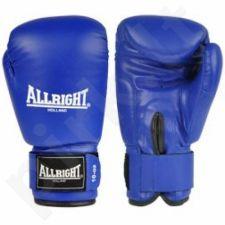 Bokso pirštinės Allright PVC mėlyna