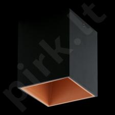 Lubinis šviestuvas EGLO 94496 | POLASSO