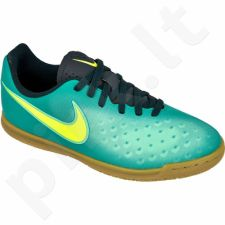 Futbolo bateliai  Nike MagistaX Ola II IC Jr 844423-375