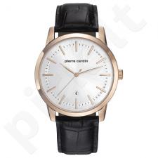 Vyriškas laikrodis Pierre Cardin PC901861F02