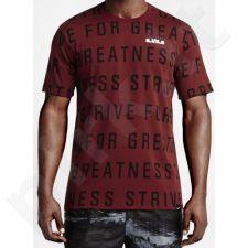 Marškinėliai Nike LeBron Strive All Over M 742748-677