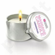 LoversPremium Massage Candle (japoniškos slyvos kvapo)