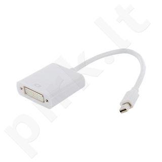 4World Adapteris mini DisplayPort [M] > DVI-I (24+5) [F], baltas